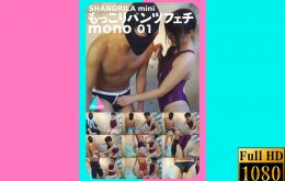 MINI-005【HD】もっこりパンツフェチ mono 01