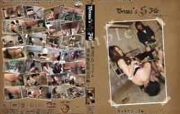 YVFD-07『女神達のSファイル』~ 糞尿豚便器完食編 Folder.03-前後編-