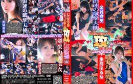 BSA-04 スペシャルファイターの【攻】プロレス技コレクション4