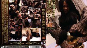 FZK-009 華麗なる黒パンスト #2